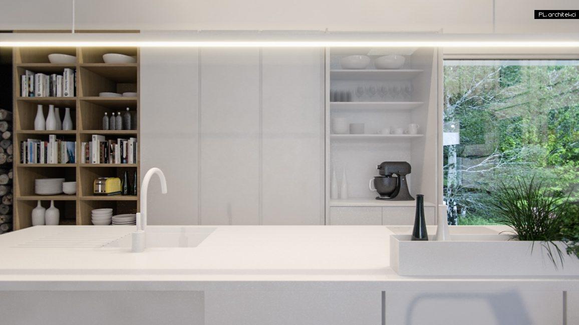 Nowoczesne wnętrze domu jednorodzinnego: kuchnia | Poznań