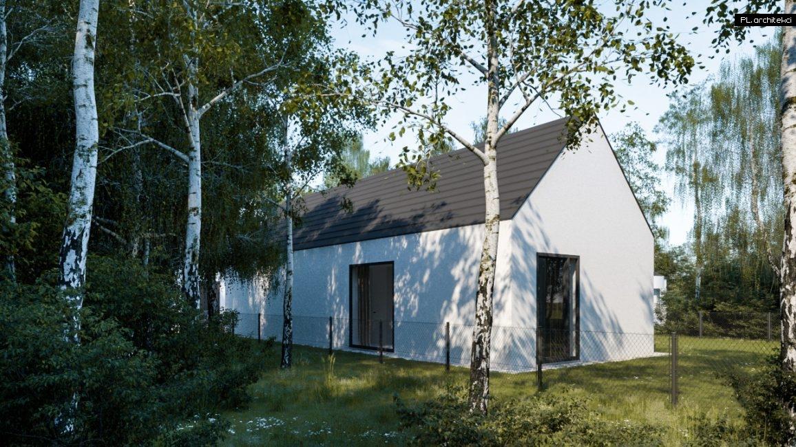 Nowoczesny dom na wąskiej działce   Poznań